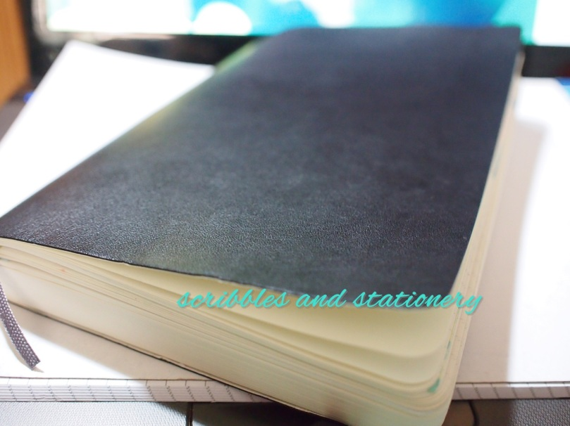 Moleskine Soft Cover Daily Diary/Planner